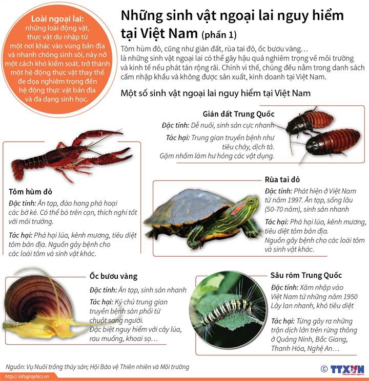 [Infographics] Nhung sinh vat ngoai lai nguy hiem tai Viet Nam hinh anh 1