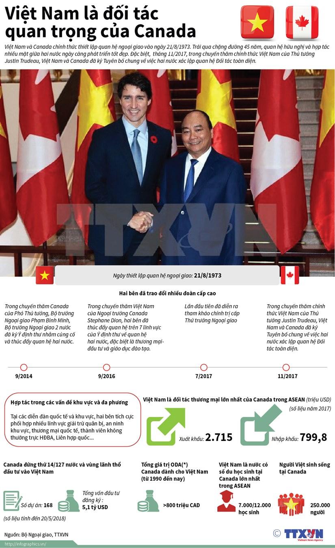 [Infographics] Viet Nam la doi tac quan trong cua Canada hinh anh 1