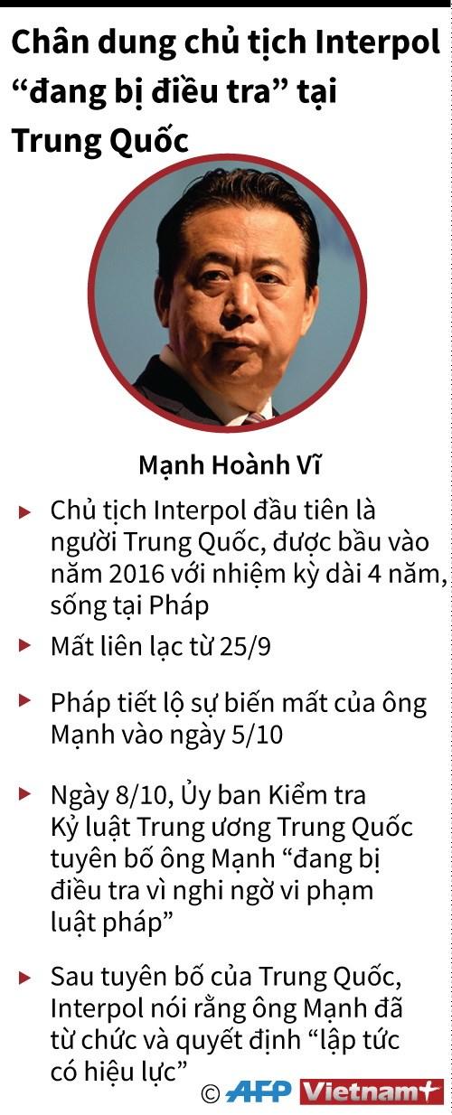 [Infographics] Chan dung cuu Chu tich Interpol bi Trung Quoc bat giu hinh anh 1