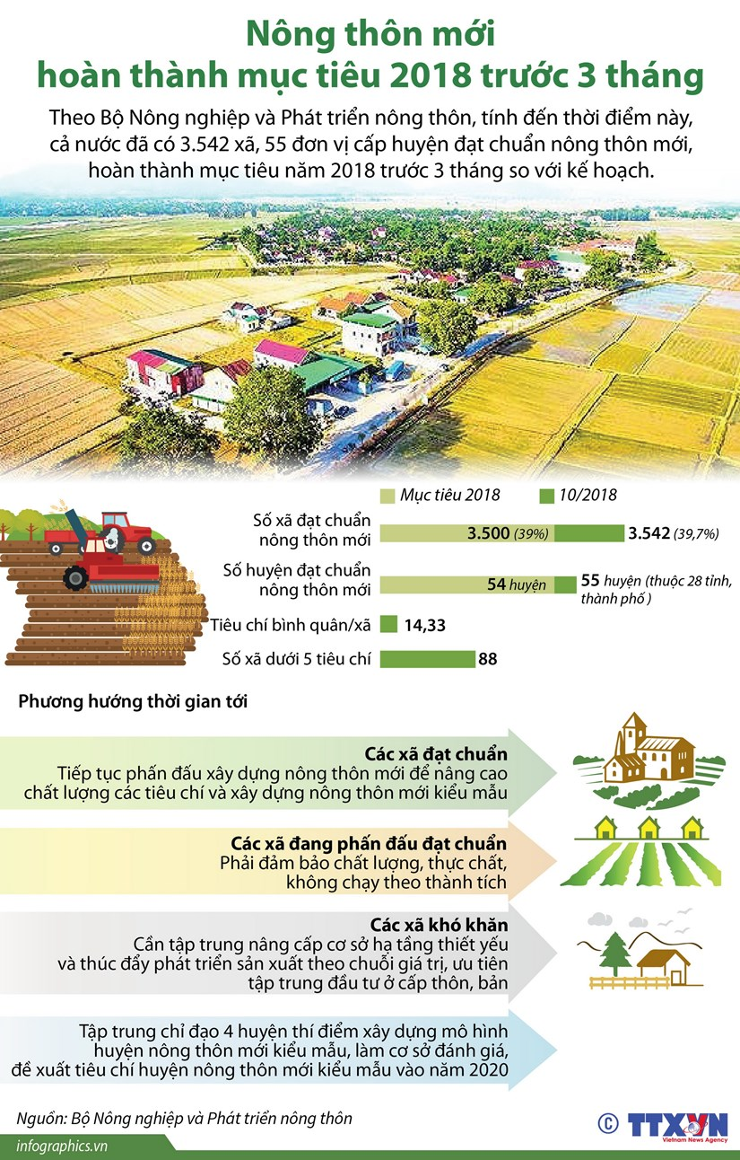 [Infographics] Nong thon moi hoan thanh muc tieu truoc 3 thang hinh anh 1