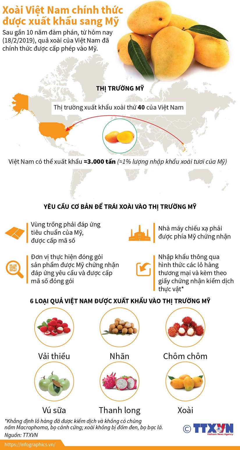 [Infographics] Xoai Viet Nam chinh thuc duoc xuat khau sang My hinh anh 1
