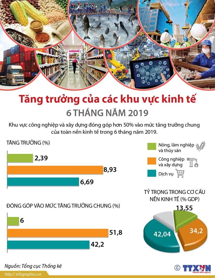 [Infographics] Tang truong cua cac khu vuc kinh te 6 thang nam 2019 hinh anh 1