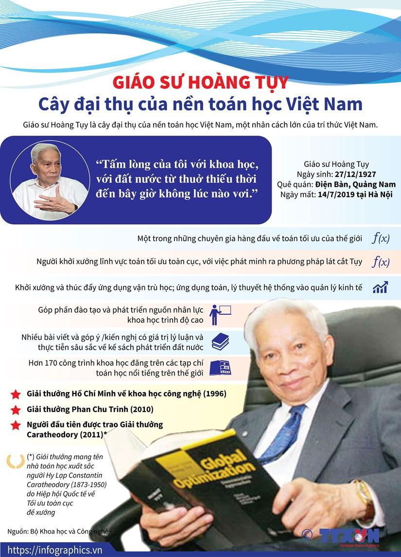 Giao su Hoang Tuy - Cay dai thu cua nen toan hoc Viet Nam hinh anh 1