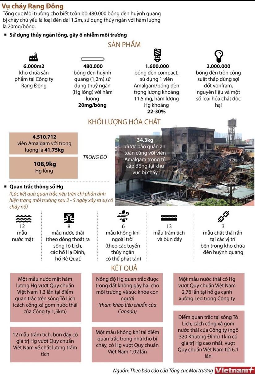 [Infographics] 480.000 bong den huynh quang cua Rang Dong co thuy ngan hinh anh 1