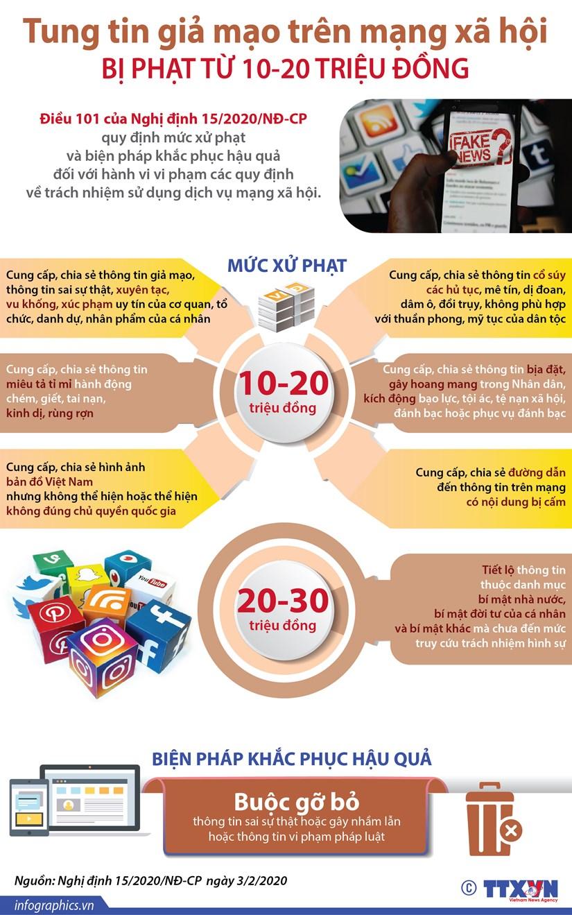 [Infographics] Tung tin gia mao tren mang bi phat tu 10-20 trieu dong hinh anh 1