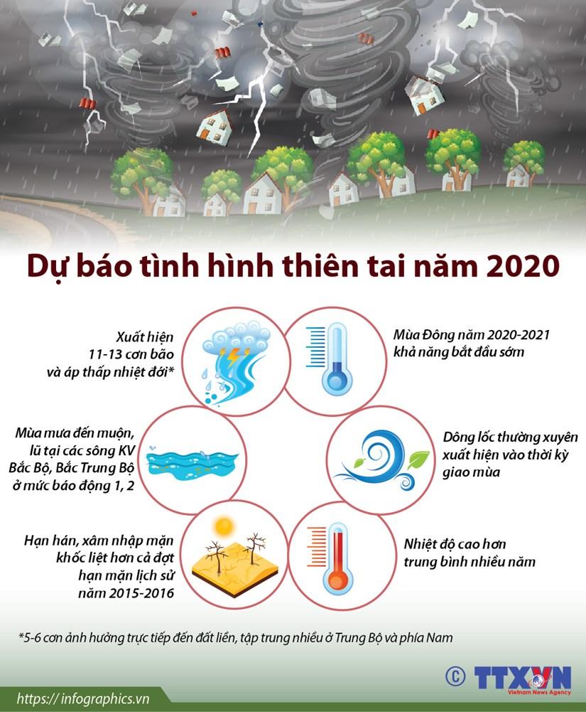 [Infographics] Du bao tinh hinh thien tai tai Viet Nam nam 2020 hinh anh 1