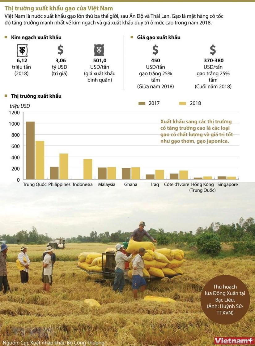 [Infographics] Thi truong xuat khau gao cua Viet Nam hinh anh 1