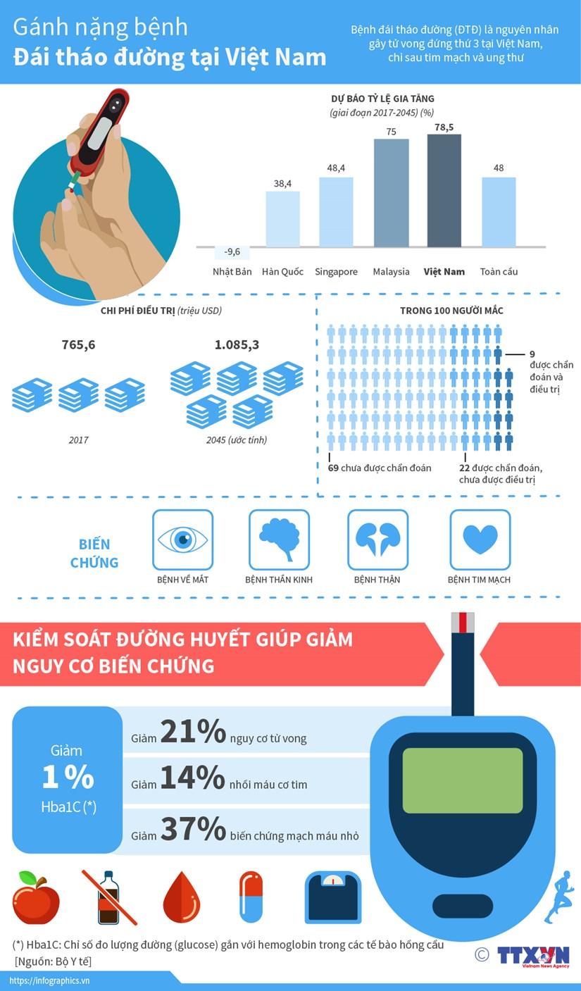 [Infographics] Ganh nang benh dai thao duong tai Viet Nam hinh anh 1