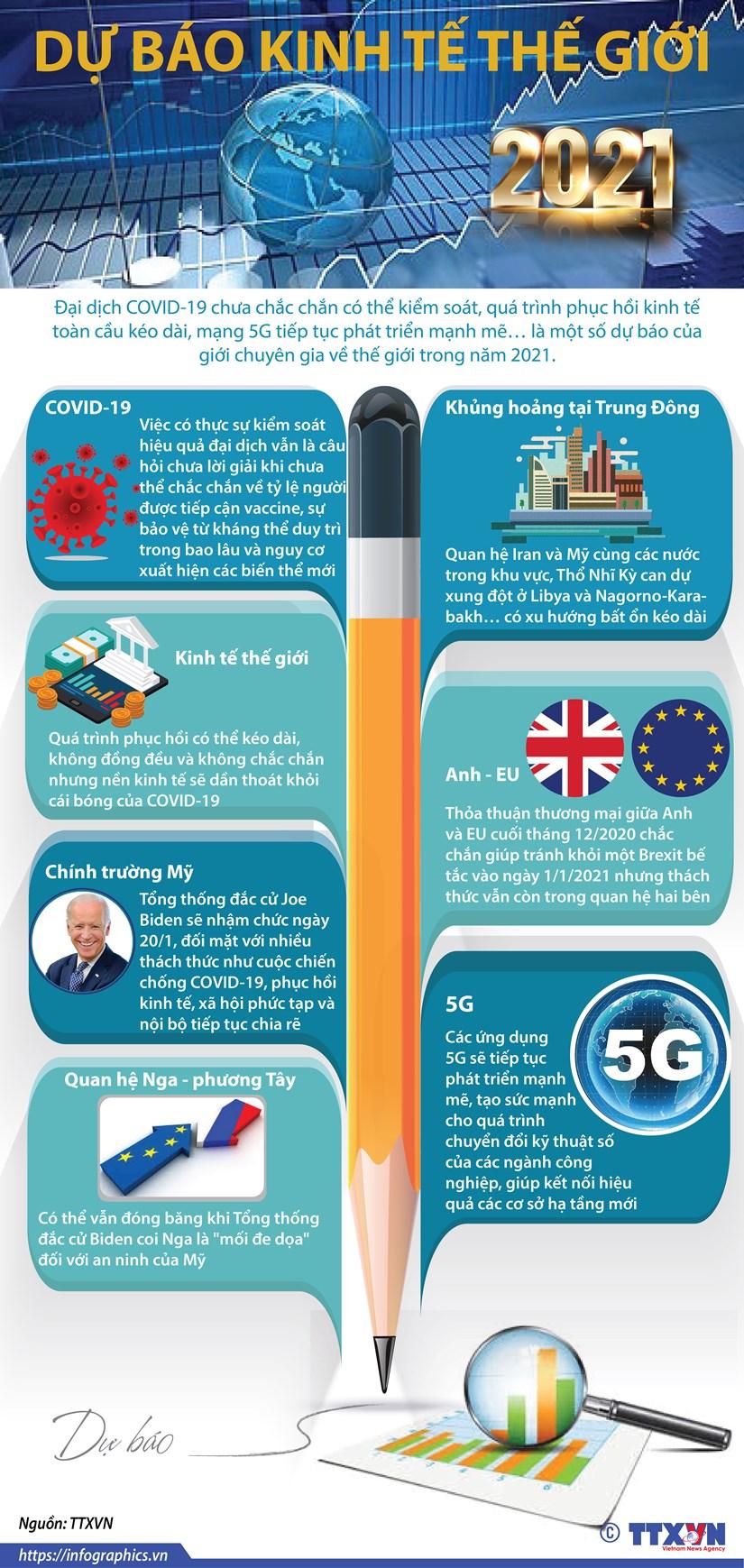[Infographics] Gioi chuyen gia du bao ve kinh te the gioi trong 2021 hinh anh 1
