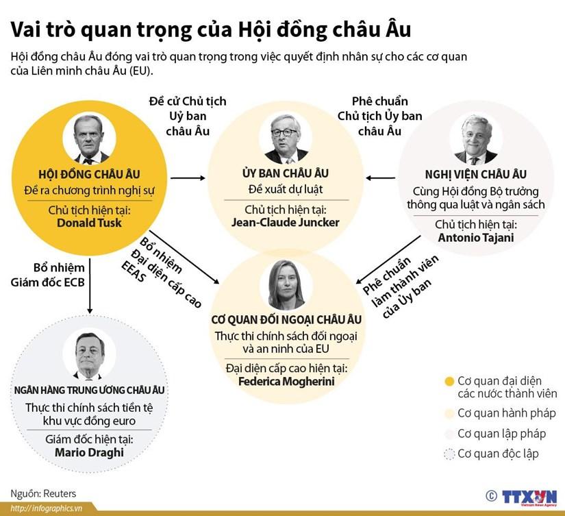 [Infographics] Vai tro quan trong cua Hoi dong chau Au hinh anh 1