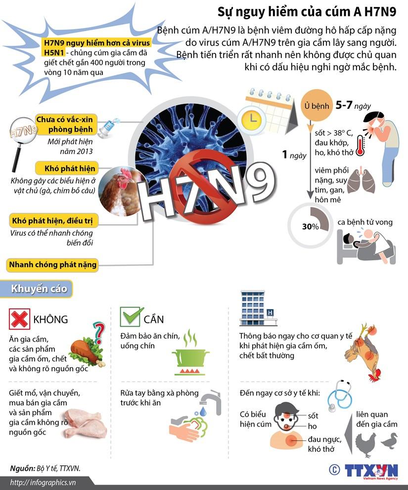 [Infographics] Su nguy hiem cua virus cum gia cam A/H7N9 hinh anh 1