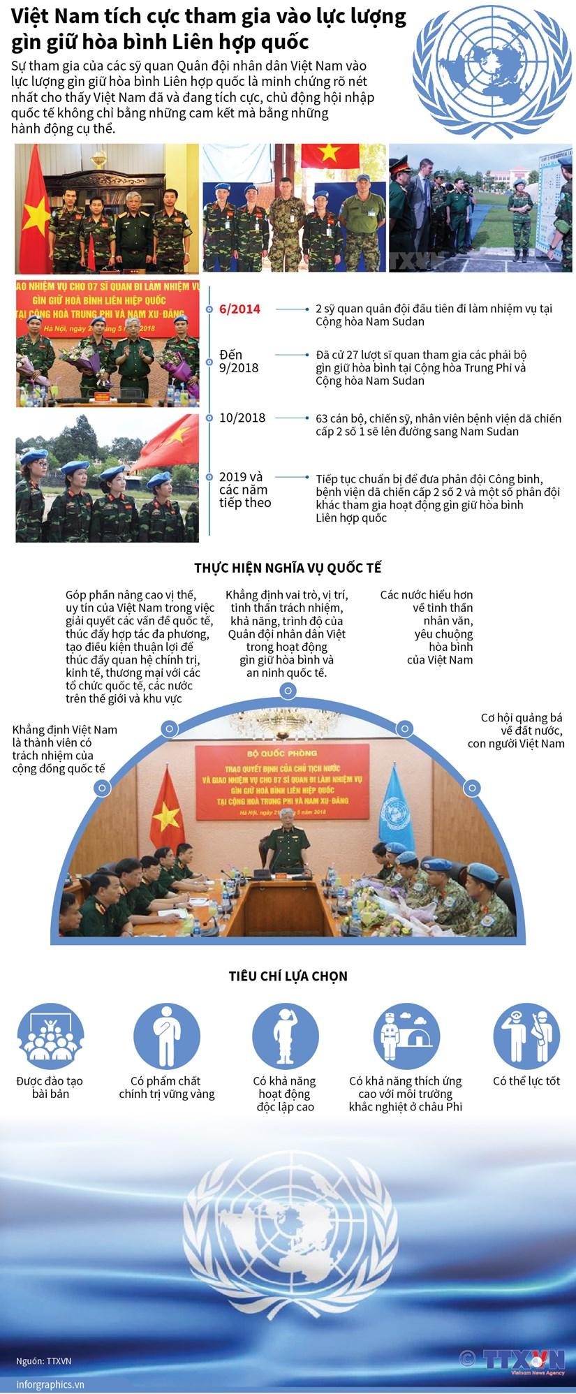 Viet Nam tich cuc tham gia vao luc luong gin giu hoa binh cua LHQ hinh anh 1