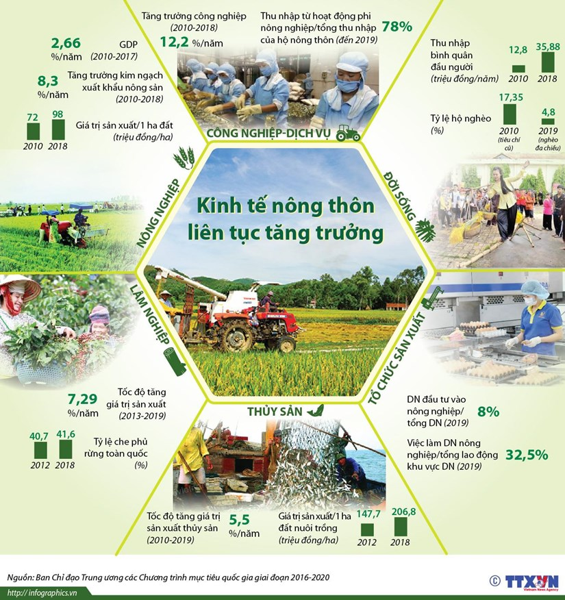 [Infographics] Kinh te nong thon lien tuc tang truong hinh anh 1