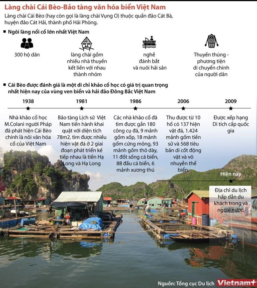 [Infographics] Lang chai Cai Beo - Bao tang van hoa bien Viet Nam hinh anh 1