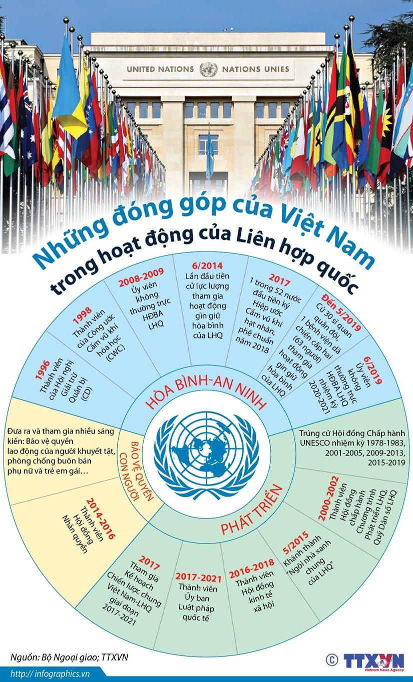 [Infographics] Nhung dong gop cua Viet Nam trong hoat dong cua LHQ hinh anh 1