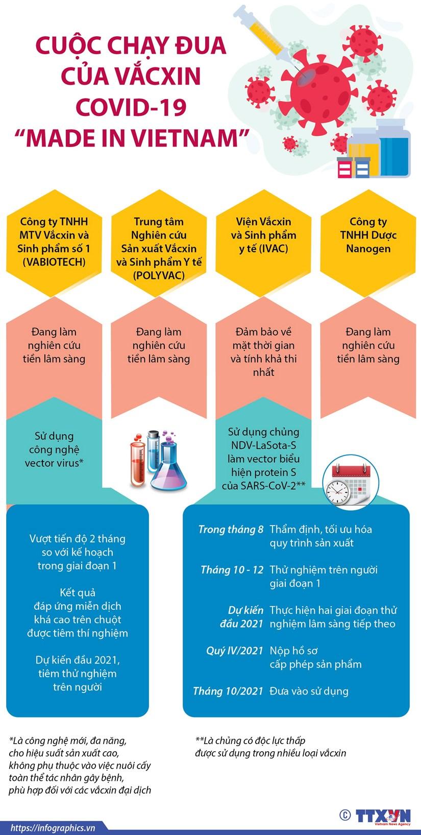 [Infographics] Viet Nam du kien co vacxin COVID-19 vao thang 10/2021 hinh anh 1