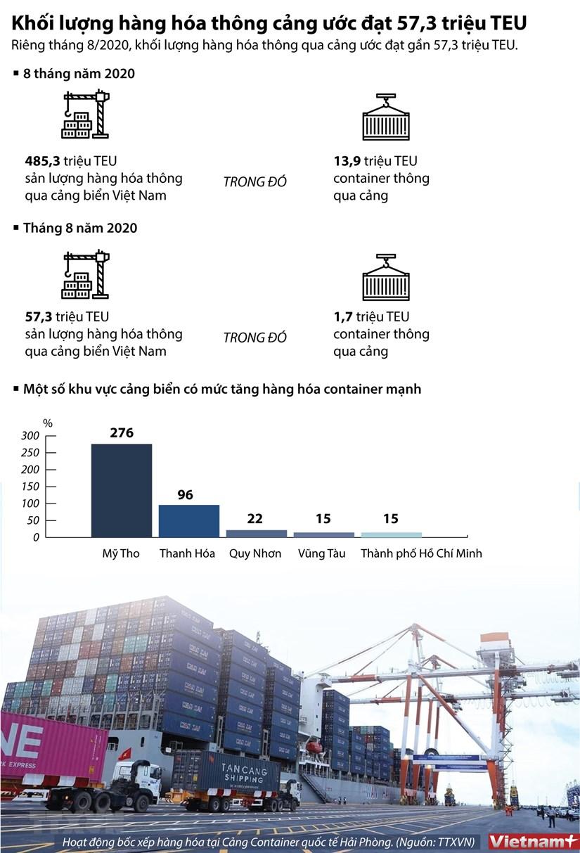 [Infographics] Khoi luong hang hoa thong cang uoc dat 57,3 trieu TEU hinh anh 1