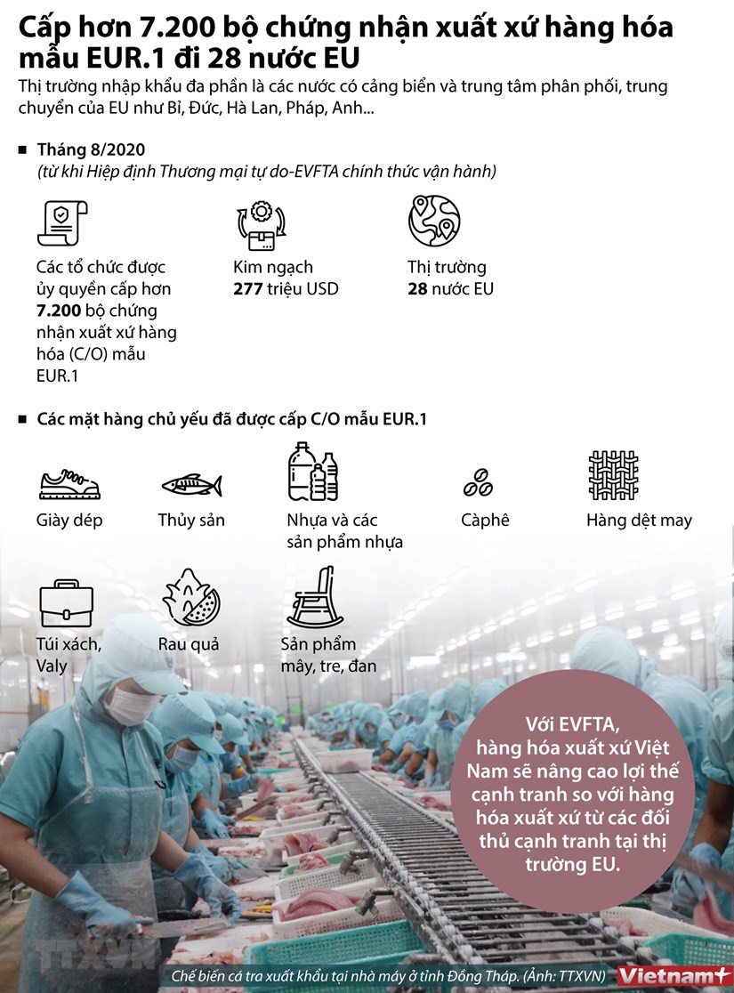 [Infographics] Cap hon 7.200 bo chung nhan xuat xu hang hoa di EU hinh anh 1