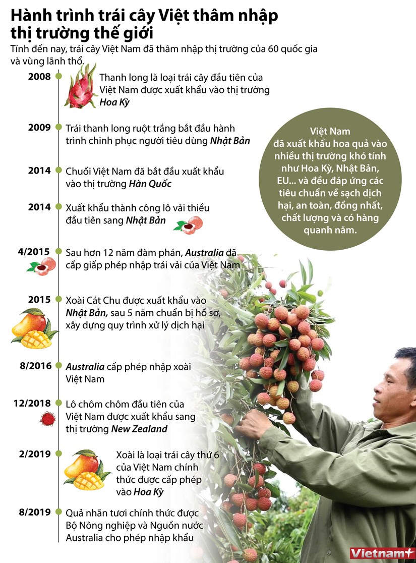 [Infographics] Hanh trinh xuat ngoai cua trai cay dac san Viet Nam hinh anh 1