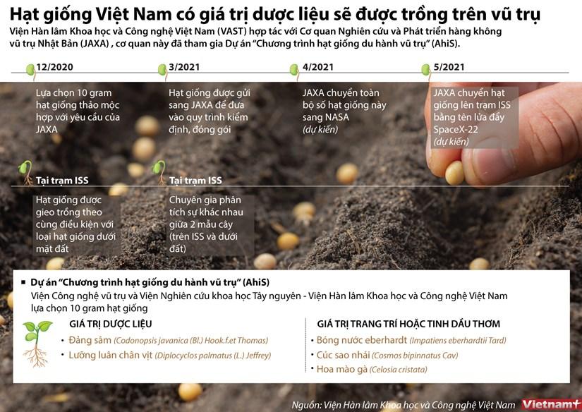 [Infographics] Hat giong duoc lieu cua Viet Nam duoc trong tren vu tru hinh anh 1