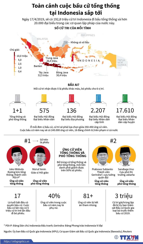 [Infographics] Toan canh cuoc bau cu tong thong o Indonesia sap toi hinh anh 1