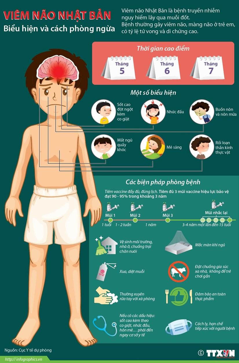 [Infographics] Viem nao Nhat Ban: Bieu hien va cach phong ngua hinh anh 1