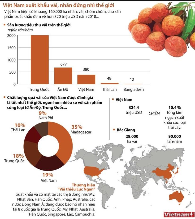 [Infographics] Viet Nam dung thu hai the gioi ve xuat khau vai, nhan hinh anh 1