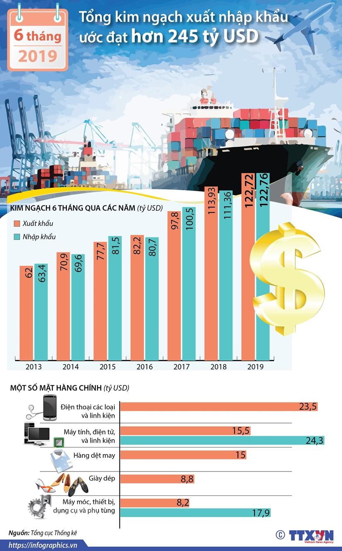 [Infographics] Tong kim ngach xuat nhap khau 6 thang dat 245 ty USD hinh anh 1