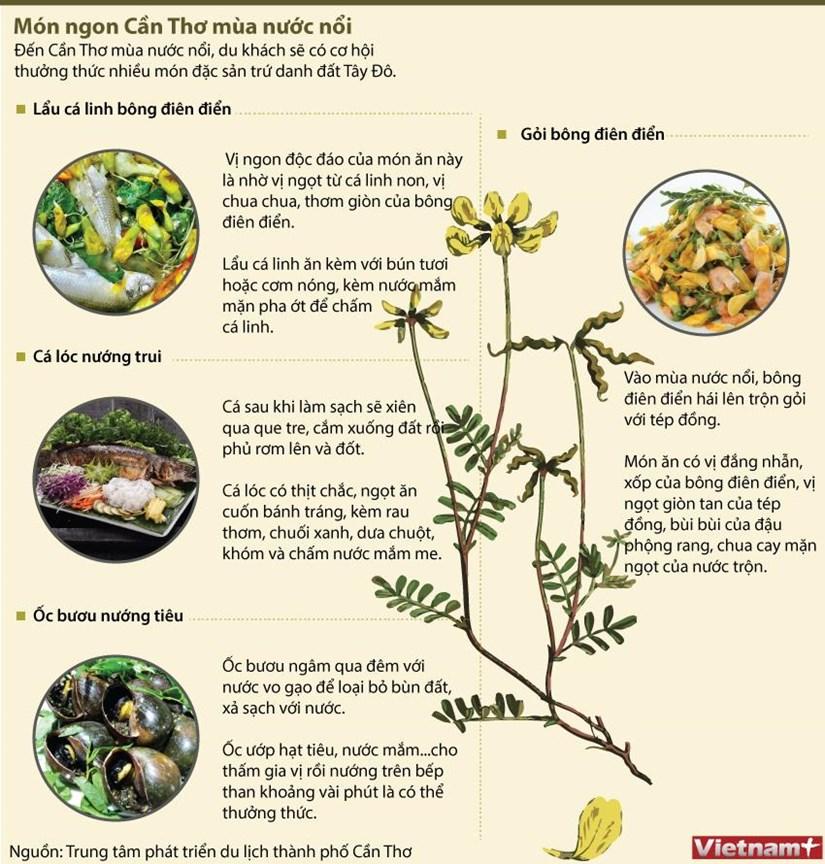 [Infographics] Thuong thuc mon ngon Can Tho mua nuoc noi hinh anh 1