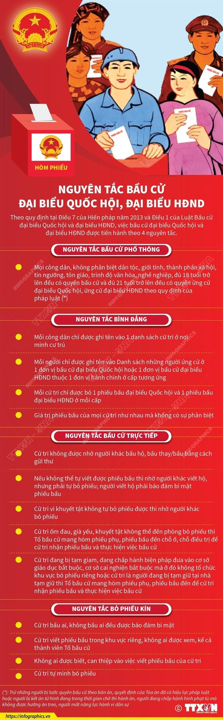 [Infographics] Nguyen tac bau cu dai bieu Quoc hoi, dai bieu HDND hinh anh 1