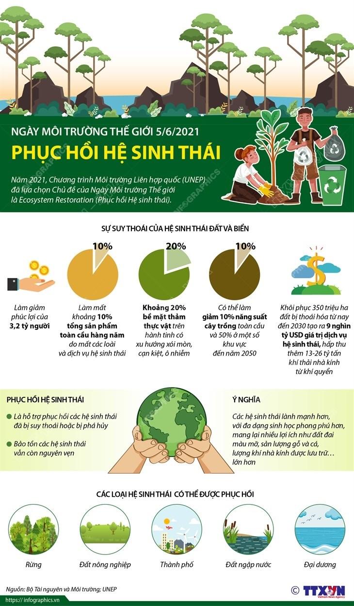 [Infographics] Ngay Moi truong The gioi 5/6: Phuc hoi he sinh thai hinh anh 1