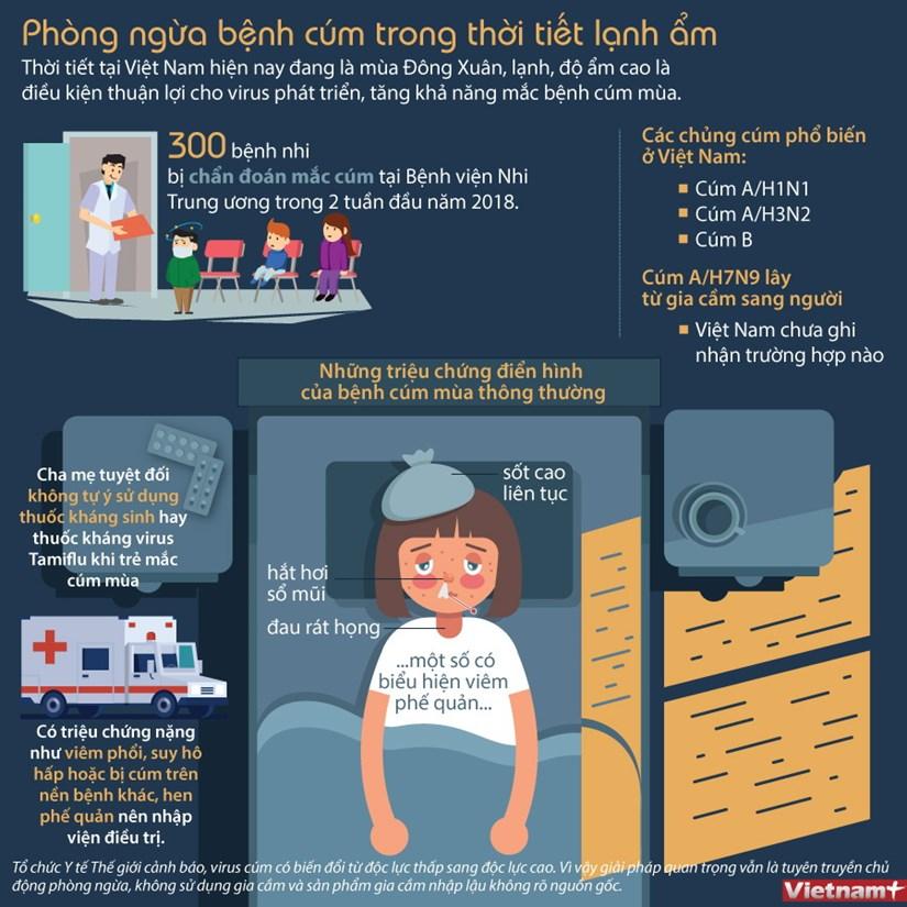 [Infographics] Phong ngua benh cum trong thoi tiet lanh am hinh anh 1