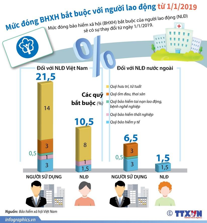 [Infographics] Muc dong BHXH bat buoc voi nguoi lao dong tu 1/1/2019 hinh anh 1