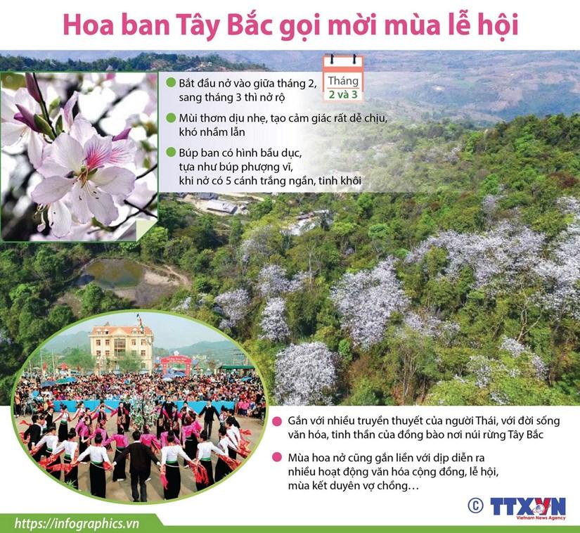 [Infographics] Hoa ban Tay Bac goi moi mua le hoi hinh anh 1
