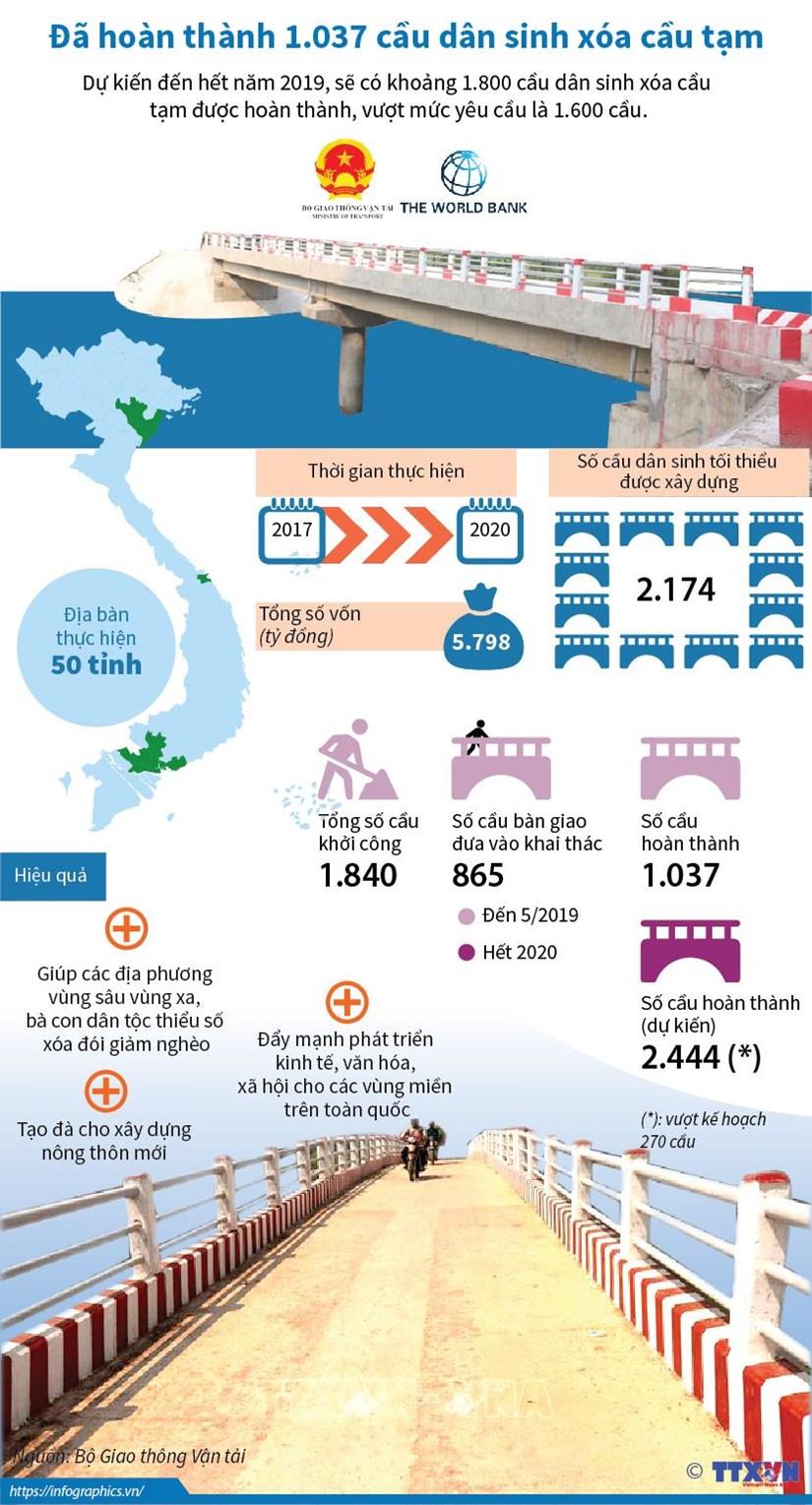 [Infographics] Da hoan thanh 1.037 cau dan sinh xoa cau tam hinh anh 1