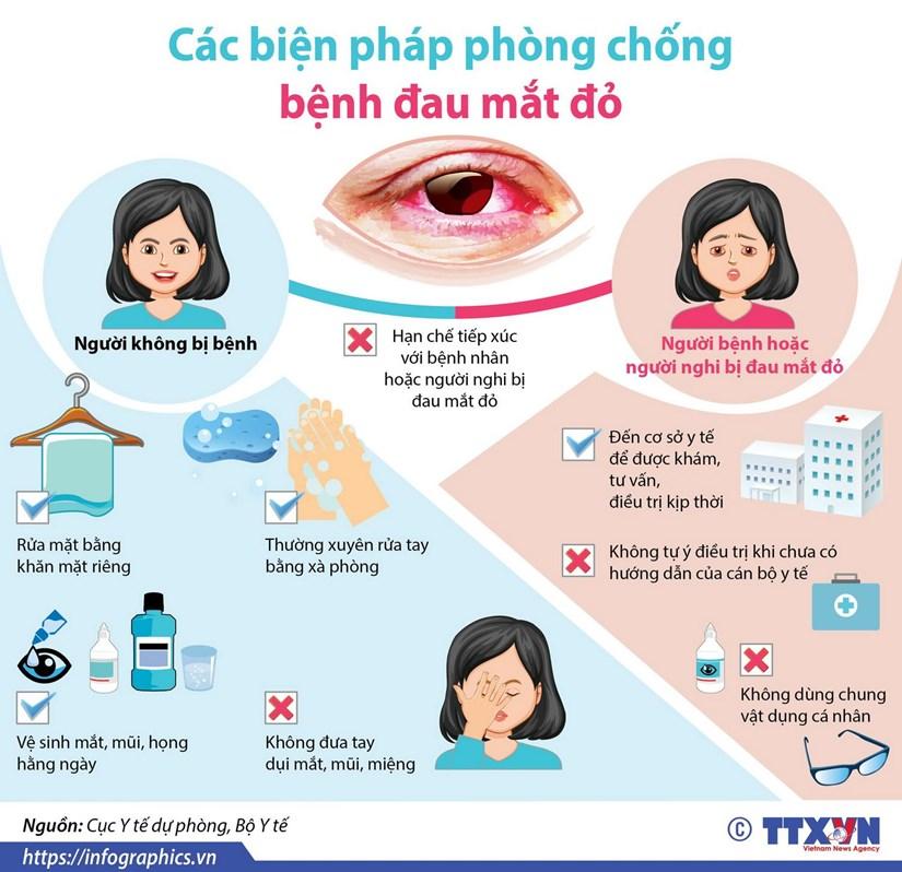 [Infographics] Cac bien phap phong chong benh dau mat do hinh anh 1