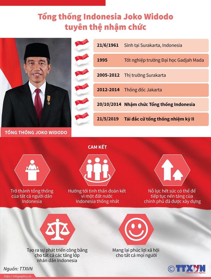 Tong thong Indonesia Joko Widodo tuyen the nham chuc hinh anh 1