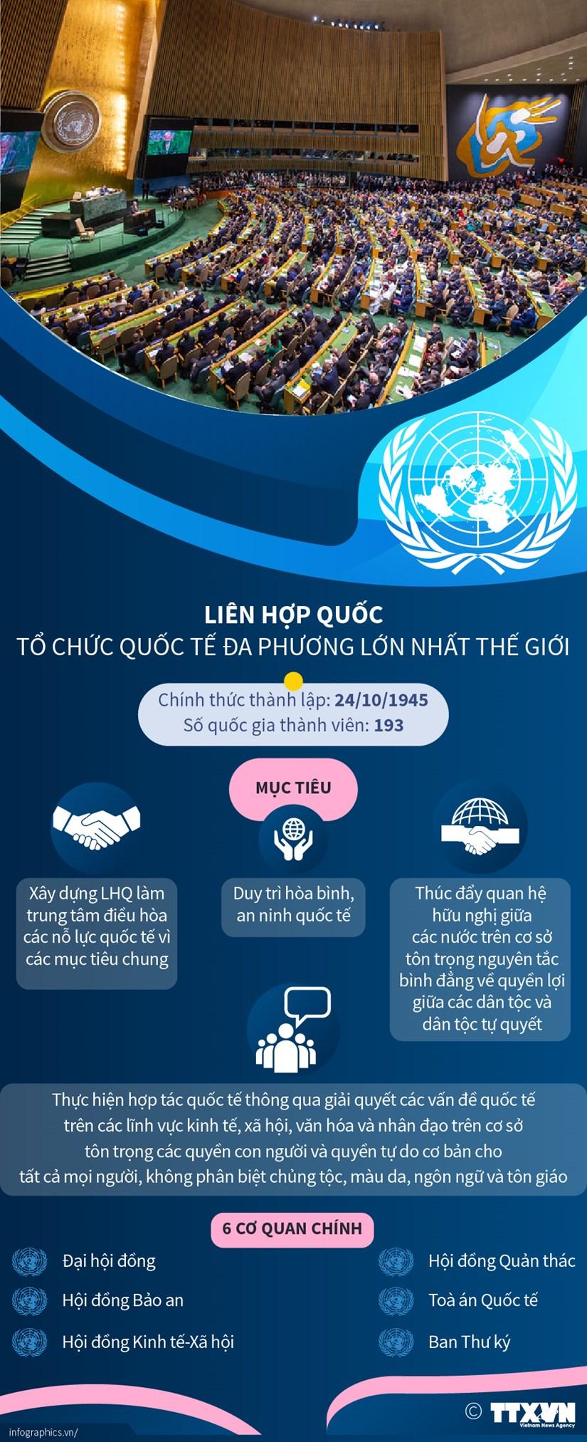 Lien hop quoc - to chuc quoc te da phuong lon nhat the gioi hinh anh 1