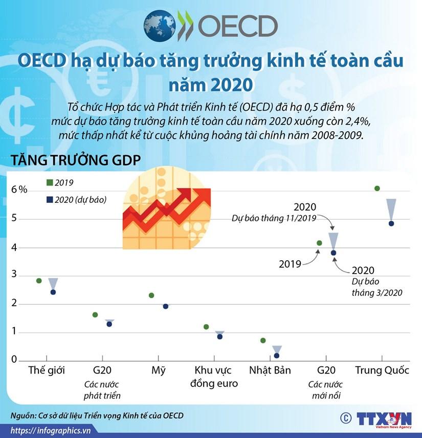 OECD ha du bao tang truong kinh te toan cau nam 2020 hinh anh 1