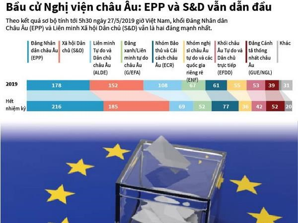[Infographics] EPP va S&D van dan dau tai bau cu Nghi vien chau Au hinh anh 1
