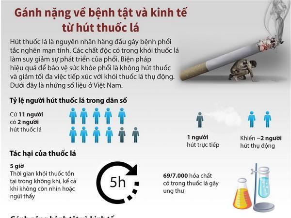 [Infographics] Ganh nang ve benh tat va kinh te tu hut thuoc hinh anh 1