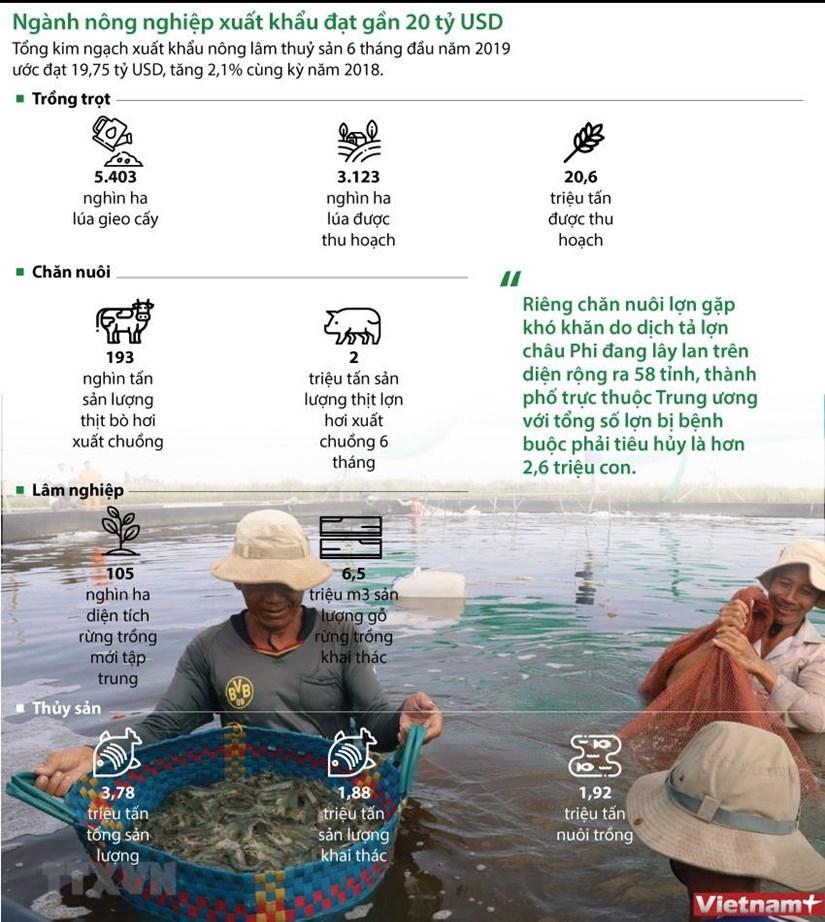 [Infographics] Nganh nong nghiep xuat khau dat gan 20 ty USD hinh anh 1