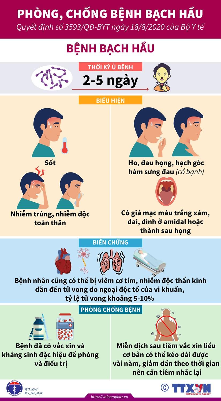 [Infographics] Nhung dieu can biet ve can benh bach hau hinh anh 1
