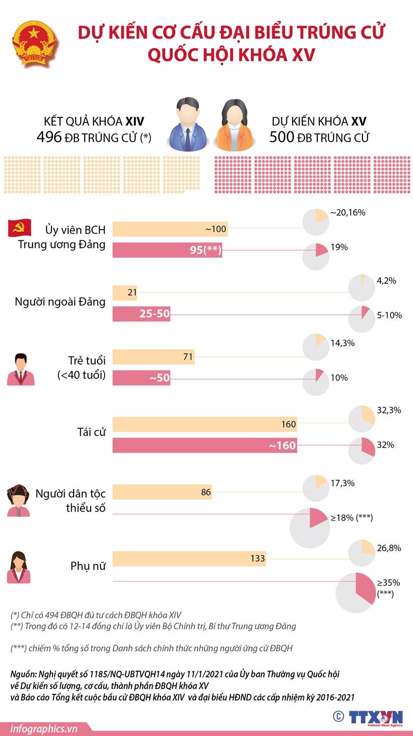 [Infographics] Du kien co cau dai bieu trung cu Quoc hoi khoa XV hinh anh 1