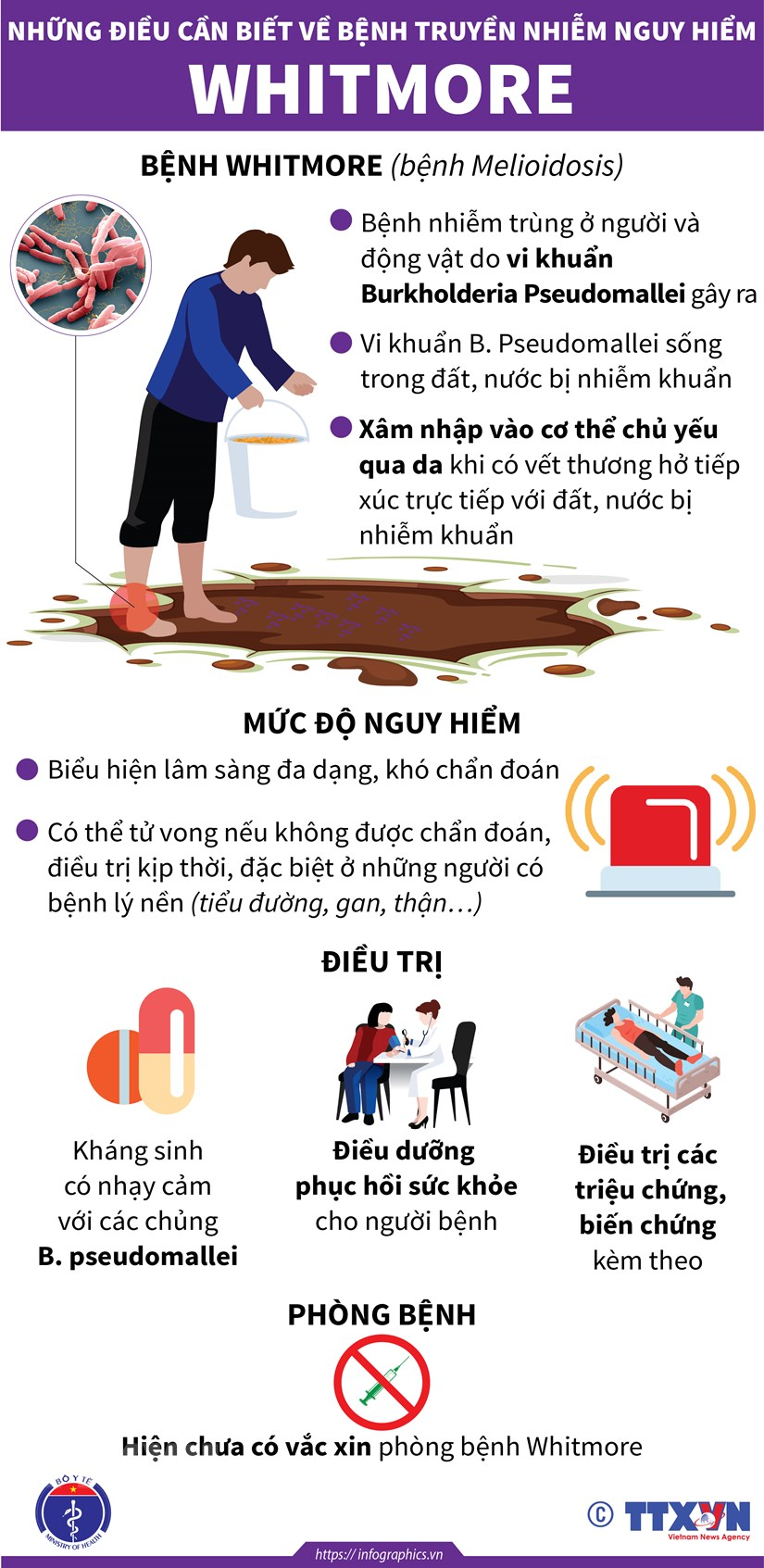 [Infographics] Nhung dieu can biet ve can benh nguy hiem Whitmore hinh anh 1