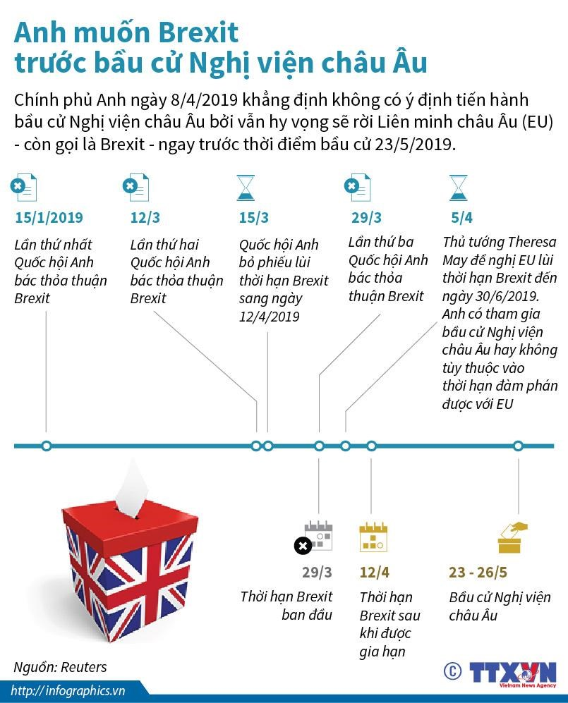 [Infographics] Anh muon Brexit truoc bau cu Nghi vien chau Au hinh anh 1