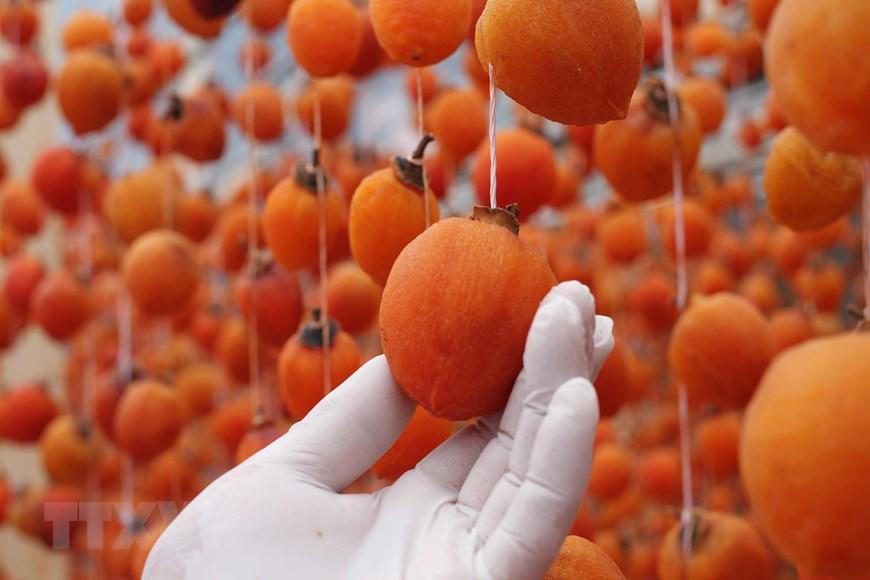Lâm Đồng: Hồi sinh nghề sấy hồng với công nghệ Nhật Bản - 7
