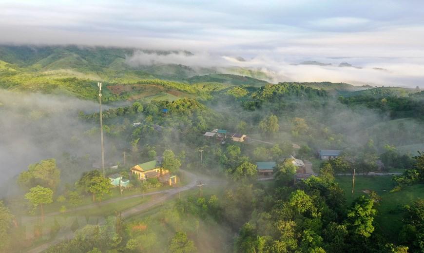 Từ trên các đỉnh núi cao, du khách có thể ngắm nhìn bình minh với biển mây bồng bềnh trên những cánh rừng tự nhiên để cảm nhận hết vẻ đẹp mê hồn của cảnh sắc nơi đây. (Ảnh: Hồ Cầu/TTXVN)