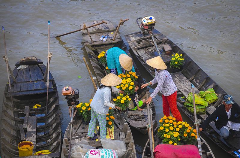 5 Trải Nghiệm Thu Vị Khi Ngao Du Miền Tay Mua Nước Nổi điểm đến Vietnam Vietnamplus