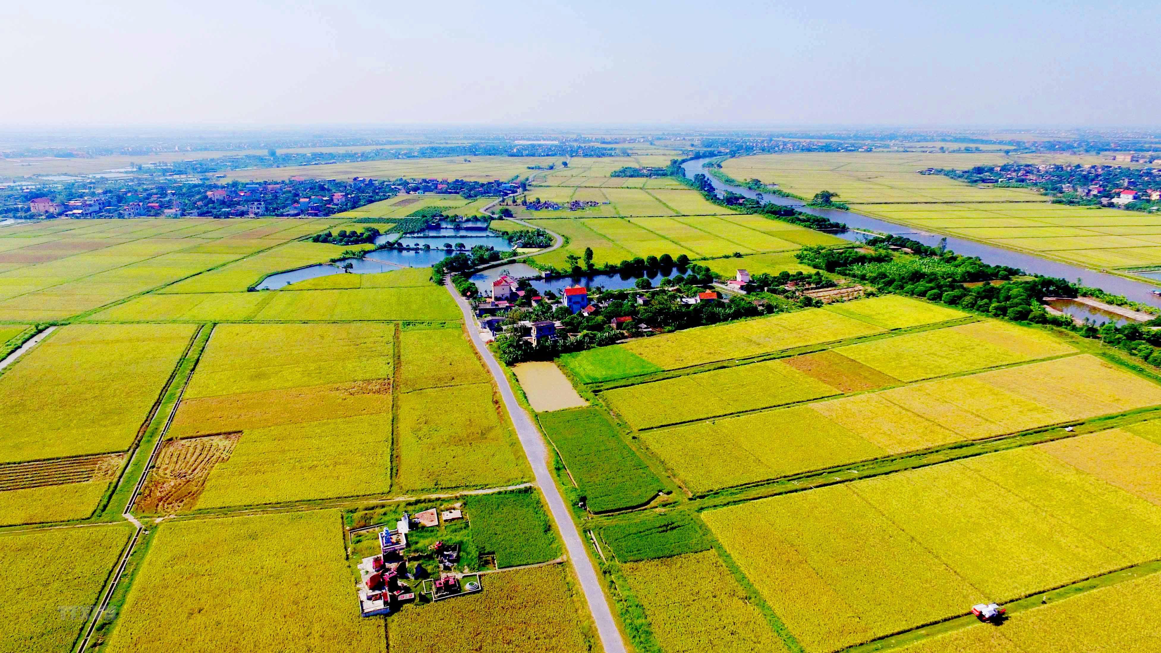 Xu thế phát triển thị trường quyền sử dụng đất nông nghiệp | Bất ...